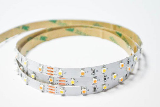 3528 60LED/M CCT Adjustable LED Strip